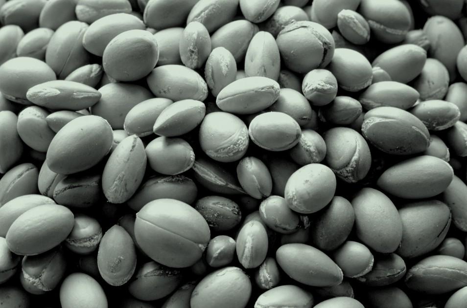 Maria Nila True Soft stones